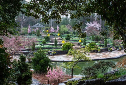 50 Most Amazing University Botanical Gardens and Arboretums in the ...