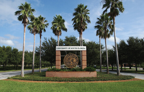 University Of South Florida Best Colleges Online