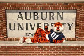 Auburn - Top 50 Most Affordable Online Master's in Accounting Programs