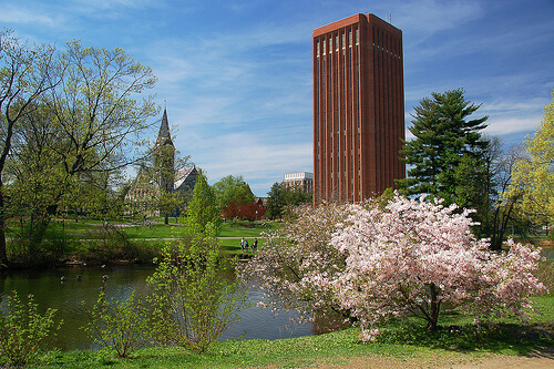 UMASS – Top 50 Most Affordable Online Master's in Accounting Programs