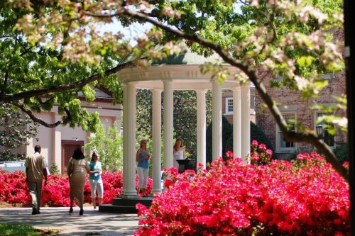 University of North Carolina - Online Master's in Elementary Education