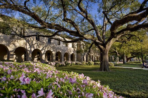 Louisiana State University - 30 Most Affordable Online Master's in Curriculum and Instruction