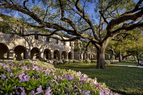Louisiana State University – 30 Most Affordable Online Master's in Curriculum and Instruction