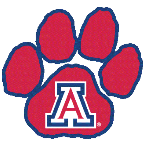 University of Arizona – Top 30 Most Affordable Online Master's in Information Technology Programs 2018