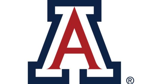 University of Arizona - 50 Most Affordable Part-Time MSN Online Programs 2019
