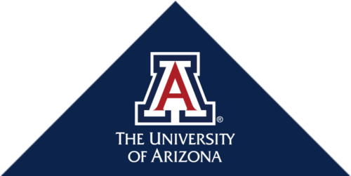 University of Arizona - Top 40 Most Affordable Master's in Technology Online Degree Programs 2019