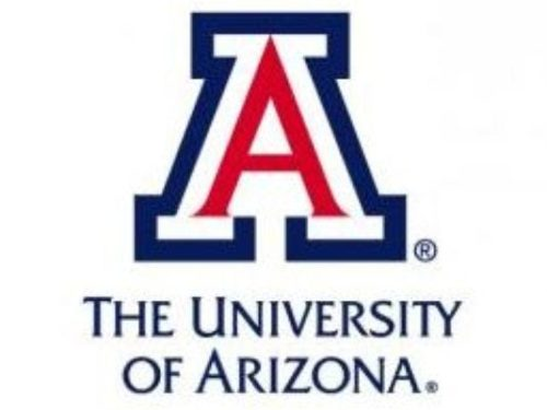 University of Arizona - Top 20 Most Affordable MSN in Clinical Nurse Leader Online Programs 2019