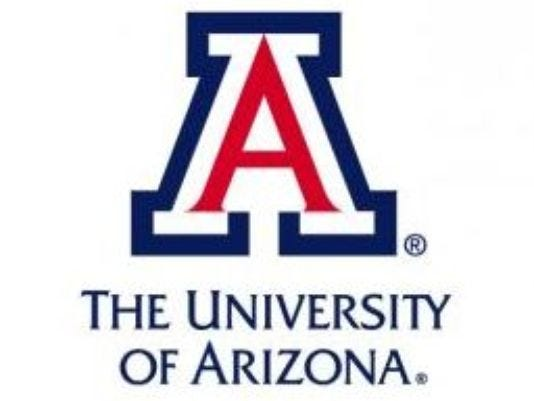 University of Arizona – Top 20 Most Affordable MSN in Clinical Nurse Leader Online Programs 2019