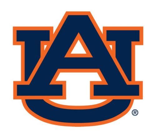 Auburn University - Top 25 Most Affordable Master's in Industrial Engineering Online Programs 2020