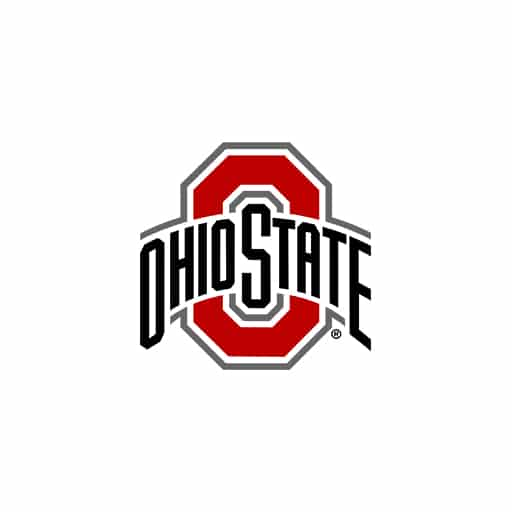 Ohio State University – Top 50 Accelerated MSN Online Programs