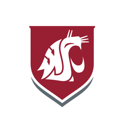 Washington State University - Top 30 Most Affordable Online RN to BSN Programs 2020
