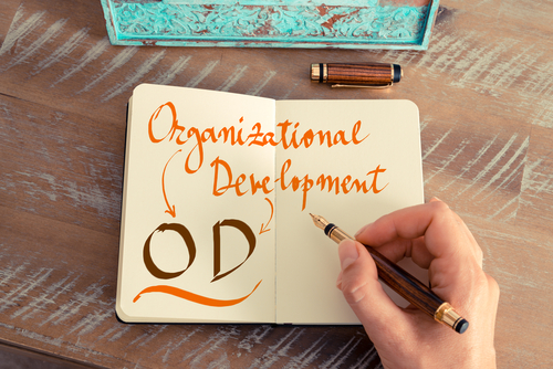 What are Organizational Development Interventions?